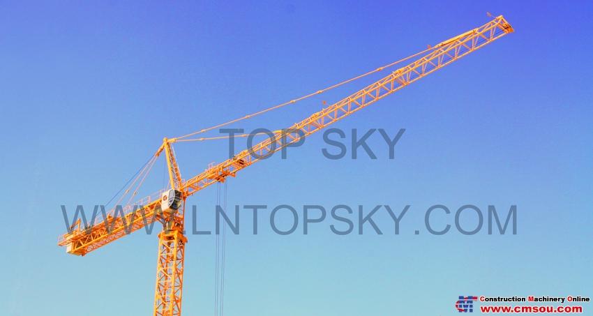 天一 T6036(H3/36B) Tower Crane